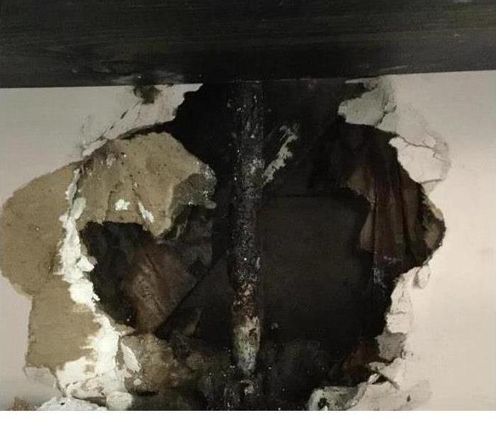 Mold Remediation Mold? Signs of Water Problems?