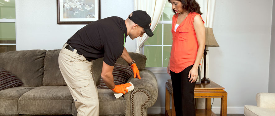 Bellaire, TX carpet upholstery cleaning