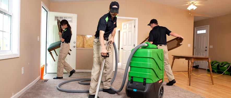 Bellaire, TX cleaning services